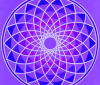 violeta_c.jpg